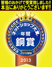 皆様のおかげでネットショップ大賞2013 年間 ネットショップ大賞 銅賞を受賞致しました!!