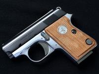 Junior Colt .25