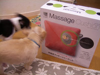 Massage cushion  &  SEALs