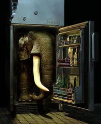 象を冷蔵庫に入れる三つの手順