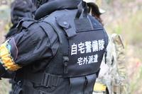 20141116通常戦 (´・ω・`)