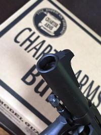 Charter Arms Bulldog その②