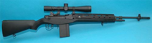 M14RAS右