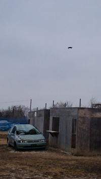AK祭り UFO?