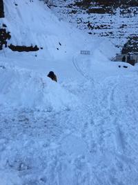 降雪時の送迎対応について。
