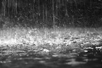 【本日限定】雨の日サービスDAY!!
