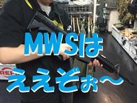 ( ゚∀゚)o彡゜MWS!MWS! ( ゚∀゚)o彡゜