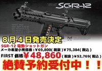 発売前にSGR-12について勉強