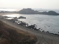 八戸の津波被害その2(蕪島~大須賀海岸)