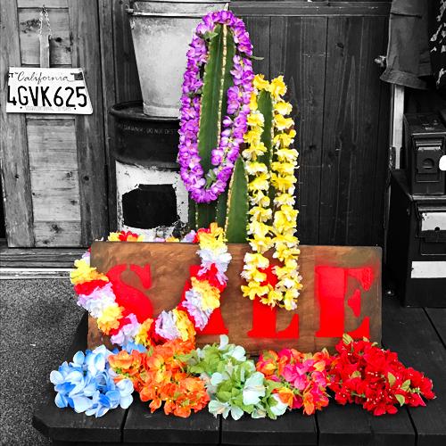 ポルタアンドゲートPORTAANDGATEMADE IN HAWAII/FLOWER LEI/(フラワーレイ/ピカケ/マイレ/ティリーフ/イリマ/オヒアレフア/ハラ/マウナロア/プアキカ/オハイアリイ/ハワイ製)02
