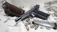 眠り銃のキャスピアン、発火して見ました。