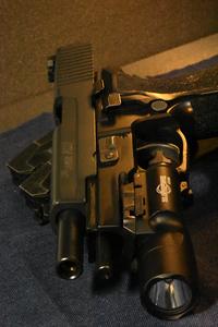 写真をとりました P226E2