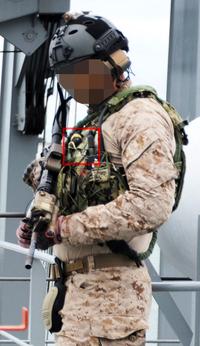 【米海軍SOFオペレーターのための10-pin マリタイムPTT!!】TEA