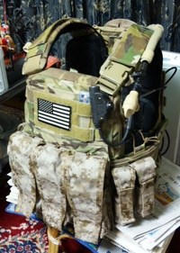 Crye CPC w/ AOR1 pouches