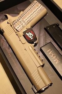 M45A1 やっと