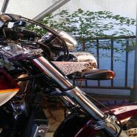 オートバイ、ヘッドライトステーに彫刻