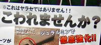 【ぐるぐる】2011 ShotShow 冬の部【会場内巡礼編】