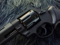 Taurus Raging Bull 8.375in