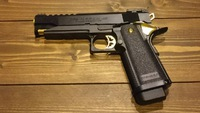 Hi-CAPA5.1 GOLD MATCH