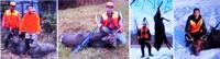 エゾ鹿スクール猟と丹沢巻狩りの比較。