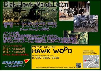 Black Hawk Wood Down - 2