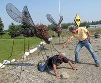 蚊の対策にどうぞ