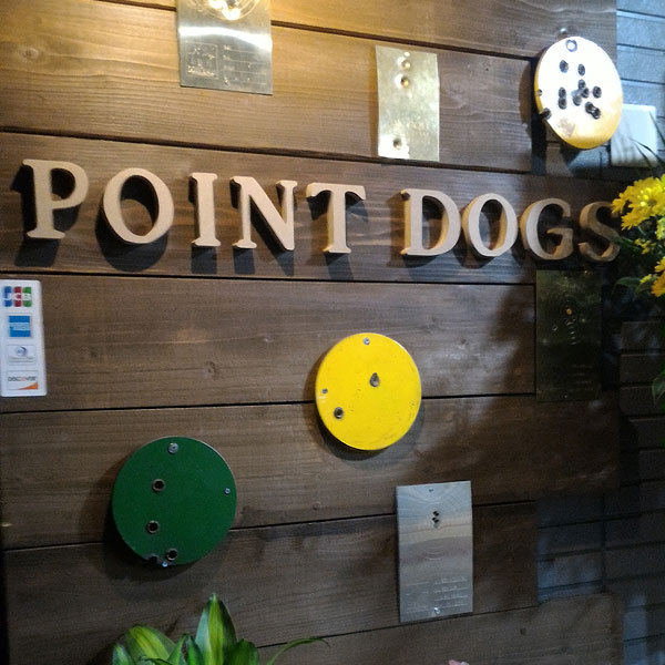 POINT DOGS