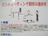 IAPS ジャパンオープン(ピン)