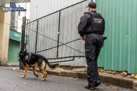 「ボストンはシューター天国」96%の銃撃事件で犯人を取り逃した市警に非難の声