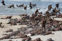 WWII 欧州西部戦線 史上最大の撤退作戦を描く、クリストファー・ノーラン監督作品「Dunkirk」