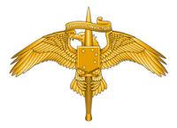 米海兵隊特殊部隊 MARSOC の制服用徽章のデザインが決定