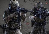 ポーランドが対ダーイッシュ (IS) 作戦支援の為、イラクに特殊作戦部隊 (GROM?) 60 名を展開
