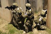 韓国特殊部隊「ROK SEALs」によるヘリコプターを使った急襲訓練映像