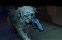 映画「ジョン・ウィック」を題材にした予告編仕立てのアクションコメディ動画『Dog Wick』