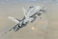 米海軍の最後の現役「MiG キラー」が退役