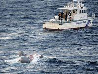 輸送艦「おおすみ」と釣り船衝突事故について