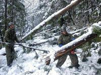 【大雪】徳島自衛隊災害派遣、安否確認を阻む停電。