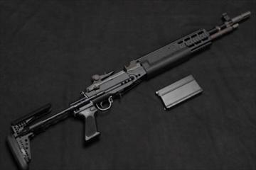 WE ガスガン EBR Mk14 Mod0 NPAS導入済み