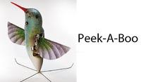 小鳥型偵察ロボット、完成間近(・・;)
