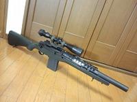 M14 PhaseⅡ