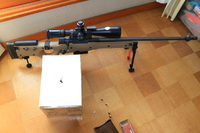 ✠ ARES AW338 Airsoft Sniper Rifle  ✠