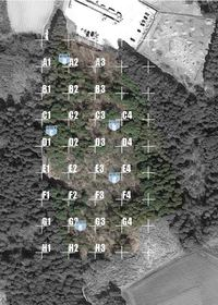 10.19 ルアナスタイル エントラント中間報告