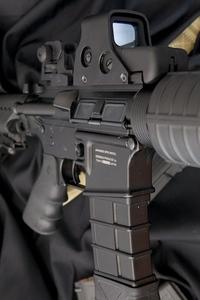 タニオコバ M4 その2