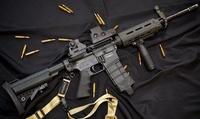 タニオコバ M4 その3