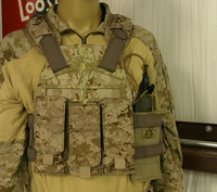 S&S PLATE FRAME + EAGLE AOR2 POUCH Part1