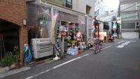 東京キャットガーディアン視察