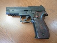 P226用アルタモント木製グリップレビュー!