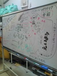 久米島です。