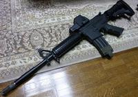landarms製ホロ557の改修