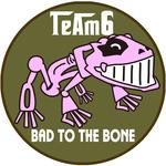 TeAm6 チームシックス